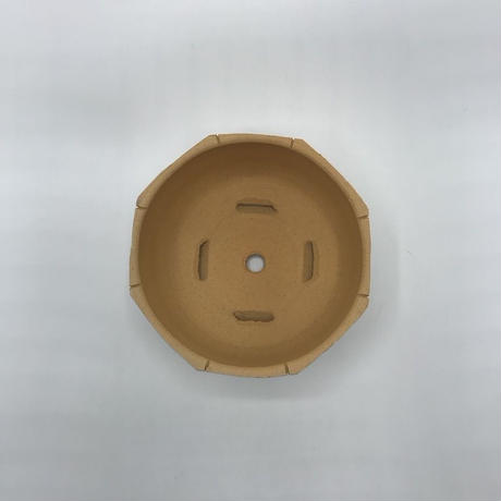 SURFace-M / BPA-0029-2