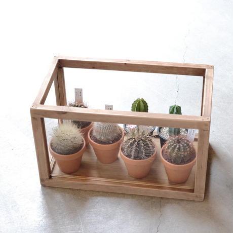 Plants Display Box