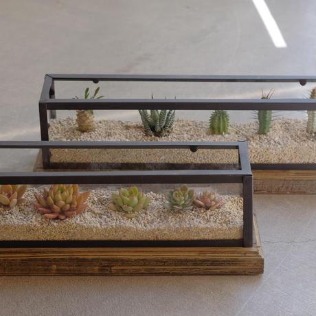アイアンガラスケース Wood台座つき