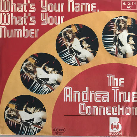 THE ANDREA TRUE CONNECTION:WHAT'S YOUR NAME,WHAT'S YOUR NUMBER