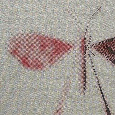 ヘルミッペ / リソグラフ ポスター|Spoon winged lacewing