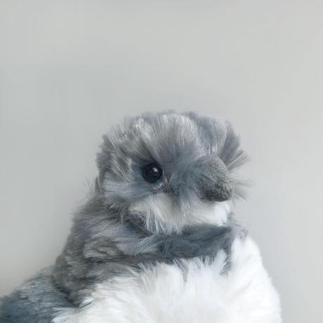 83SELECT / ぬいぐるみ フンボルトペンギン ヒナ  [100+1]