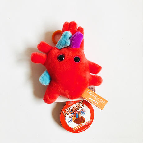 83SELECT / キーチェーン 人体 4-Type |GIANTmicrobes