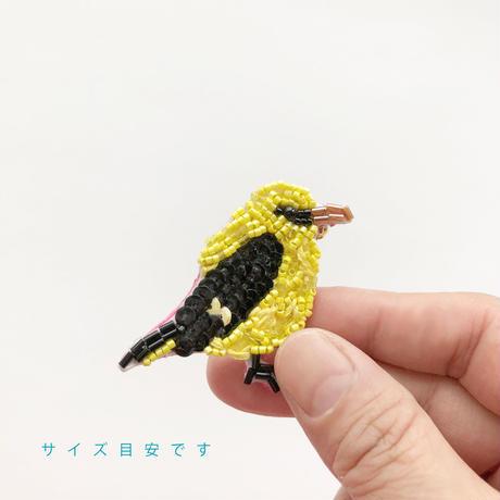吉丸 睦 / 世界の鳥ビーズブローチ12 ロイヤルテンシハチドリ|ペルー