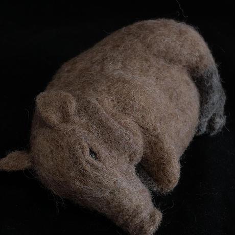 横たわるイノシシ 羊毛フェルト ブローチ/ のそ子