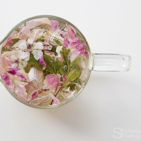 Shirakaba lab / Herbal tea   [ Forest ] Rose Blend