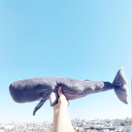 83SELECT / ぬいぐるみ Sperm Whale Pillow マッコウクジラ クッション枕