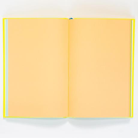 booco 2022 Diary レモン