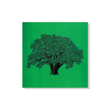 イワサトミキWORKS③木