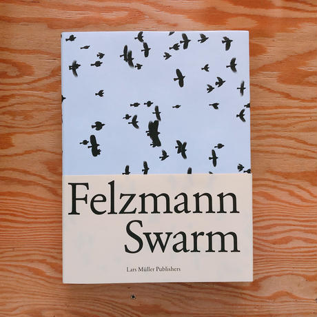 Lukas Felzmann     Swarm