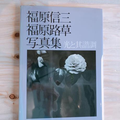 福原信三・路草写真集 光と光と其諧調