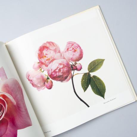 Flowers / Irving Penn(アーヴィング・ペン)