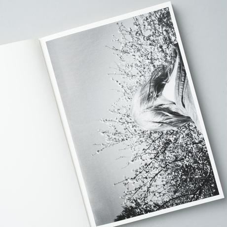 8 / Lina Scheynius(リナ・シェイニウス)