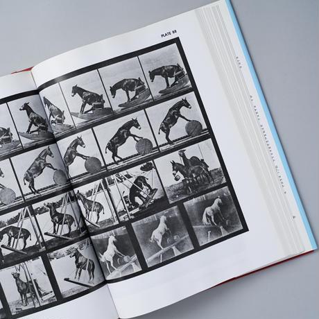 ANIMALS IN MOTION / Edward Muybridge(エドワード・マイブリッジ)