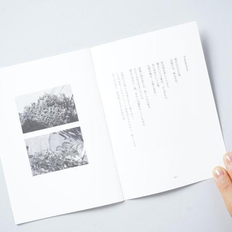 [新刊/NEW] tokyo nature photo / 小林紀晴(Kisei Kobayashi)