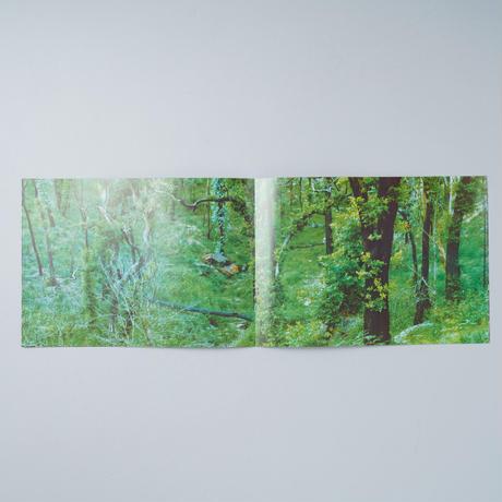 [New/新刊] Into the Gray / 柏田テツヲ(Tetsuo Kashiwada)