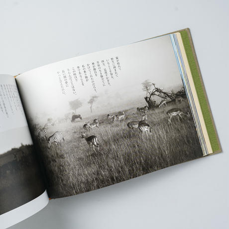AFRICA いのちの旅の物語 / 竹田津 実 (Minoru Ttaketatsu)