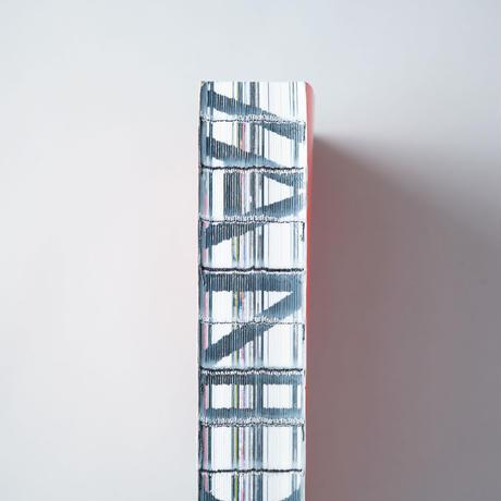 VANDALS Volume #1 / Anders Petersen (アンデルス・ペーターセン)、Matt Lambert(マット・ランバート)、 眞弓貴利 (Taka Mayumi)、ほか