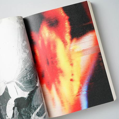 (RE)PICTURE  レピクチャー / 濱田祐史 (Yuji Hamada) 、Mark Borthwick (マーク・ボスウィック) ほか
