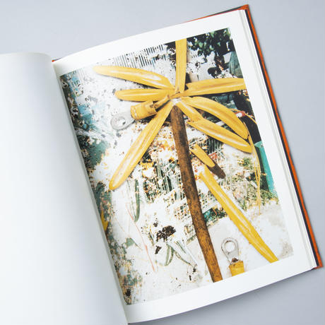 Hackney Flowers / Stephen Gill(スティーブン・ギル)