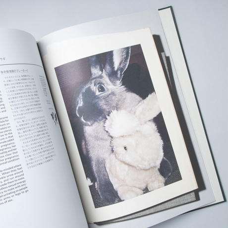 Act Of Love : A Visual Dictionary Of Animal Courtship / 監修:上田恵介, 小宮輝之 ,  大渕希郷 原案・デザイ: 財津智英子