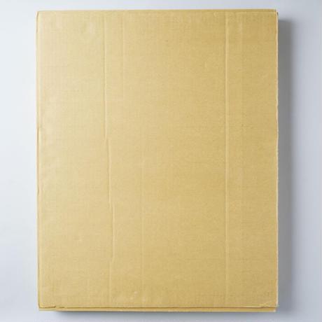 [サイン入/Signed] すべては初めておこる  ed.15/350 / 大森克巳(Katsumi Omori)