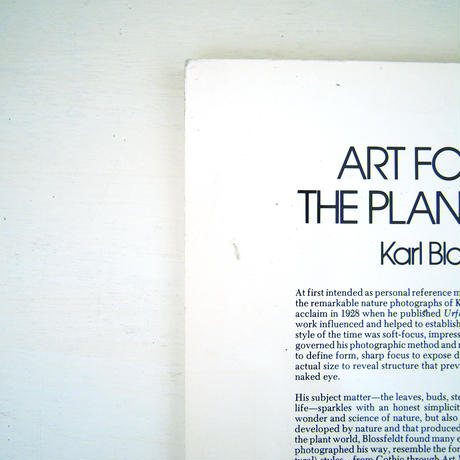 Art Forms in the Plant World / Karl Blossfeldt(カール・ブロスフェルト)