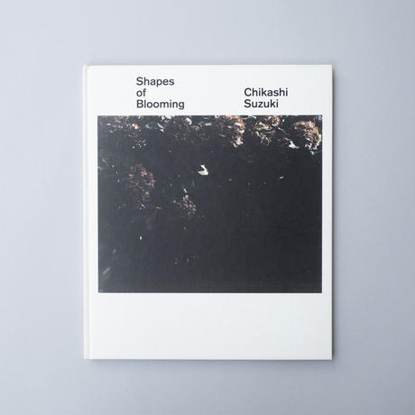 Shapes of Blooming / 鈴木親 (Chikashi Suzuki)