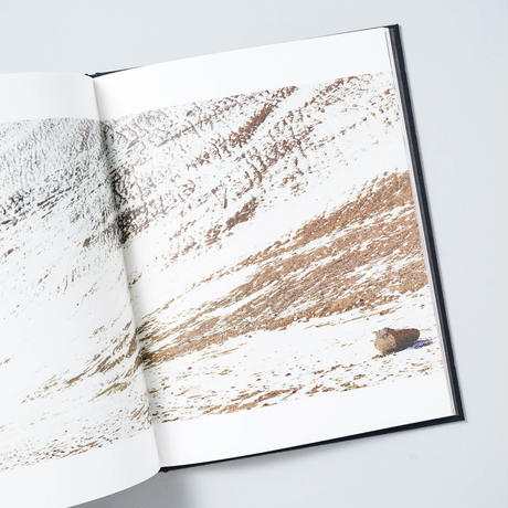 Espace Louis Vuitton Tokyo Traces of Disappearance / 畠山直哉 (Naoya Hatakeyama)他