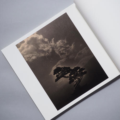 [新刊] 手中一滴  Bonsai - Microcosms Macrocosms / 山本昌男(Masao Yamamoto)