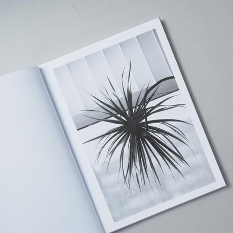 [サイン入/ Signed] Buropflanze ( Office Plant ) / Saskia Groneberg(サスキア・グローネベルク)