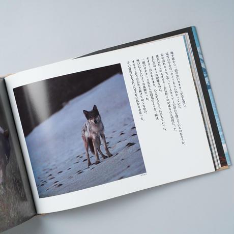 星野道夫の仕事 1 カリブーの旅 / 星野道夫 (Michio Hoshino)  解説:池澤夏樹 (Natsuki Ikezawa)