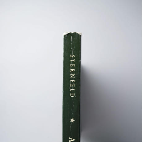 AMERICAN PROSPECTS / Joel Sternfeld(ジョエル・スタンフェルド)