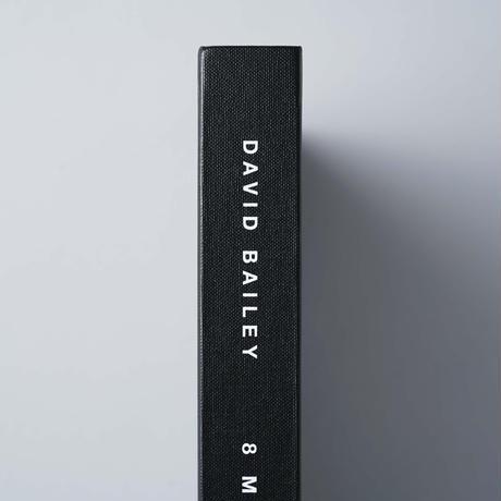 8 MINUTES / David Bailey(デヴィッド・ベイリー), Damien Harst(ダミアン・ハースト)