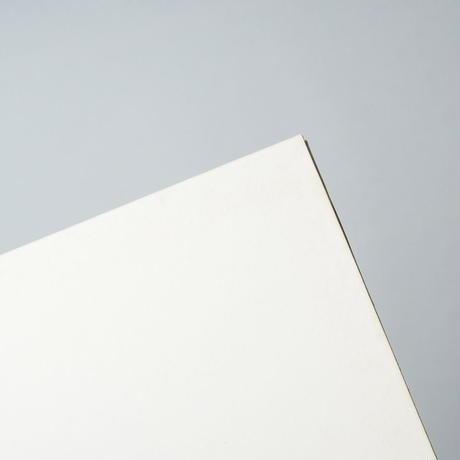 [プリント欠・特装版]  張り込み日記 Stakeout Diary  /  渡部雄吉(Yukichi Watanabe)