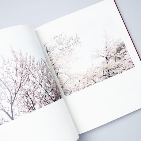 [新刊] border | Korea 菱田雄介 (Yusuke Hishida)