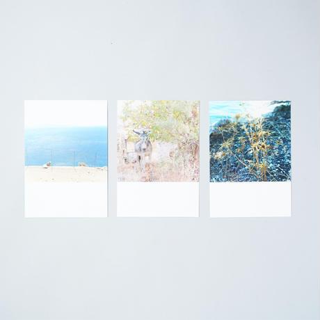 [ポストカードセット/Postcards set] Endless Summer / 田尾沙織(Saori Tao)