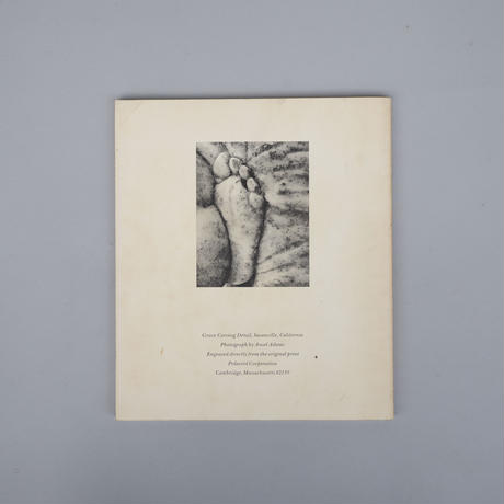 French Primitive Photography / Hippolyte Bayard, Henri Le Secq etc.