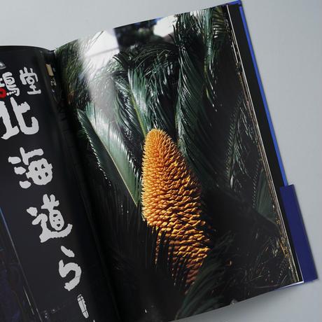 Documentary / 中平卓馬(Takuma Nakahira)