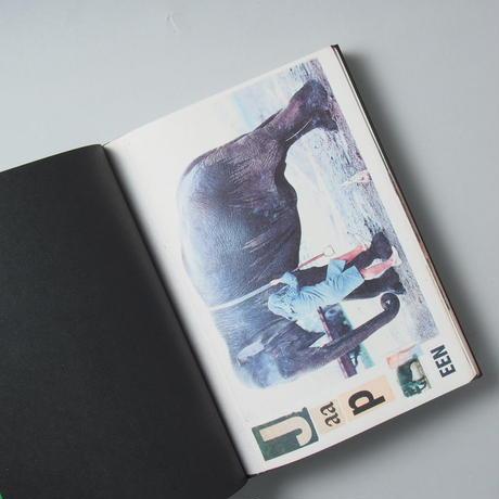 Animal Books For/ Dierenboeken Voor Jaap Zeno Anna Julian Luca / Lous Martens(ルイス・マーティンス)
