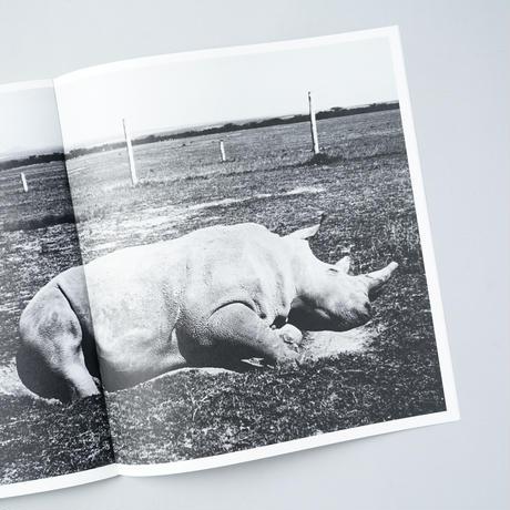[新刊/NEW] OL PEJETA / Jack Davison (ジャック・デイヴィソン)