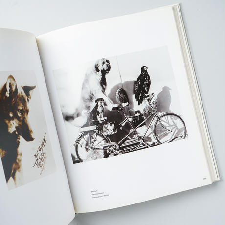 the photographed animal/useful, cute and collected / Edward Muybridge (エドワード・マイブリッジ)、他
