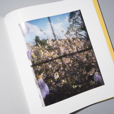 [新刊・サイン入] I KNOW HOW FURIOUSLY YOUR HEART IS BEATING / Alec Soth (アレック・ソス)