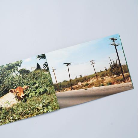 [新刊/New] 馬とサボテン Horse & Cactus / 尾仲浩二 (Koji Onaka)