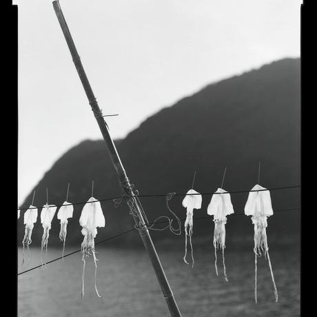[プリント5枚セット付特装版] Ehime / Gerry Johansson(ゲリー・ヨハンソン)