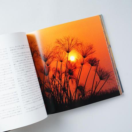 黄昏 In the Twilight / 水口博也(Hiroya Minakuchi)