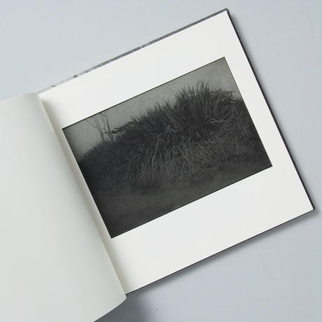 [サイン入/ Signed ] 島影 / 白石ちえこ(Chieko Shiraishi)
