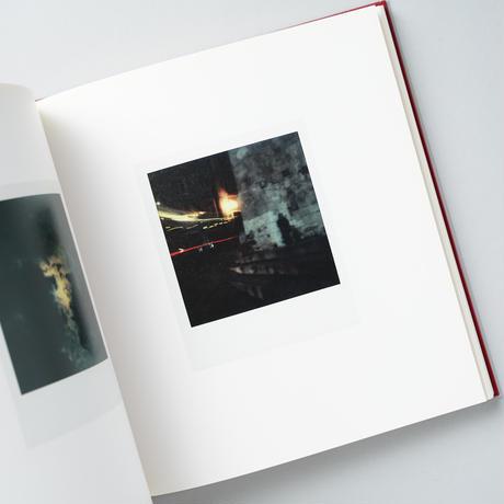 Die Polaroids : The Polaroids / Sibylle Bergemann(ズィビレ・ベルゲマン)