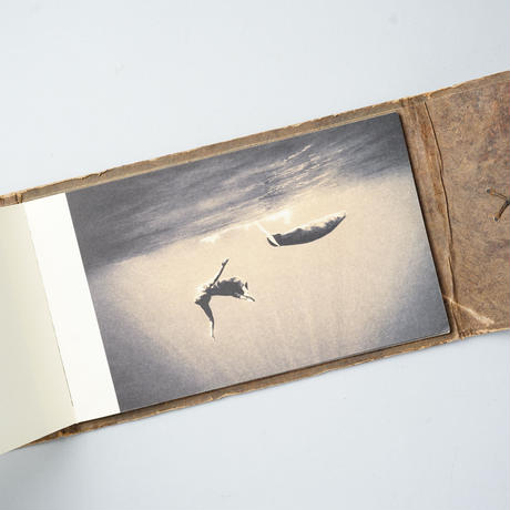 Ashes and Snow book no.2 / Gregory Colbert (グレゴリー・コルベール)