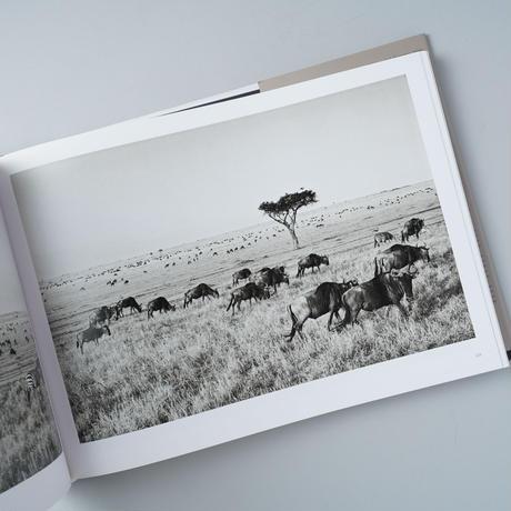 AFRICA / Sebastiao Salgado (セバスチャン・サルガド )